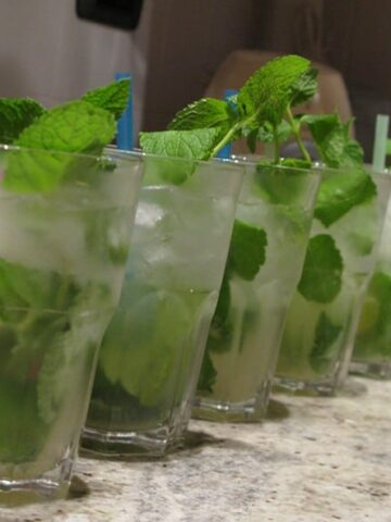 In search of the best Mojito recip
