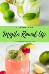 mojito cocktail round up