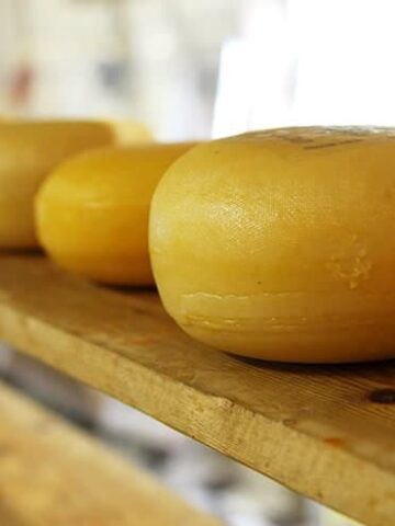 Picture of best cheddar cheese