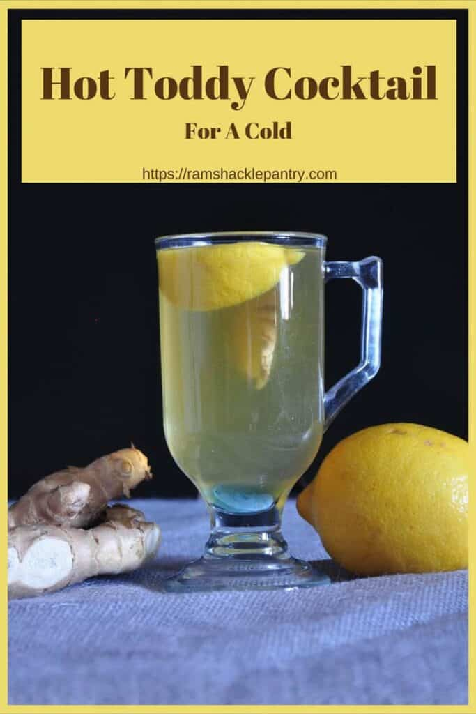 If you are going to drink a cocktail when you are not feeling well, this should be the one. This soothing and spiced drink has flavors that comfort sore throats. #toddy #whiskey #lemon #ginger