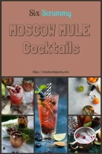 This list of Moscow Mule Recipes is DOPE