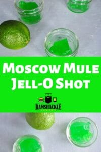 """Moscow Mule Jell-O Shot"" with several shots showing"
