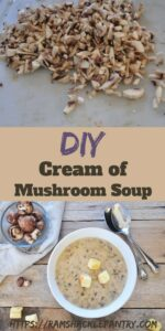 DIY Cream of Mushroom Soup pinterest