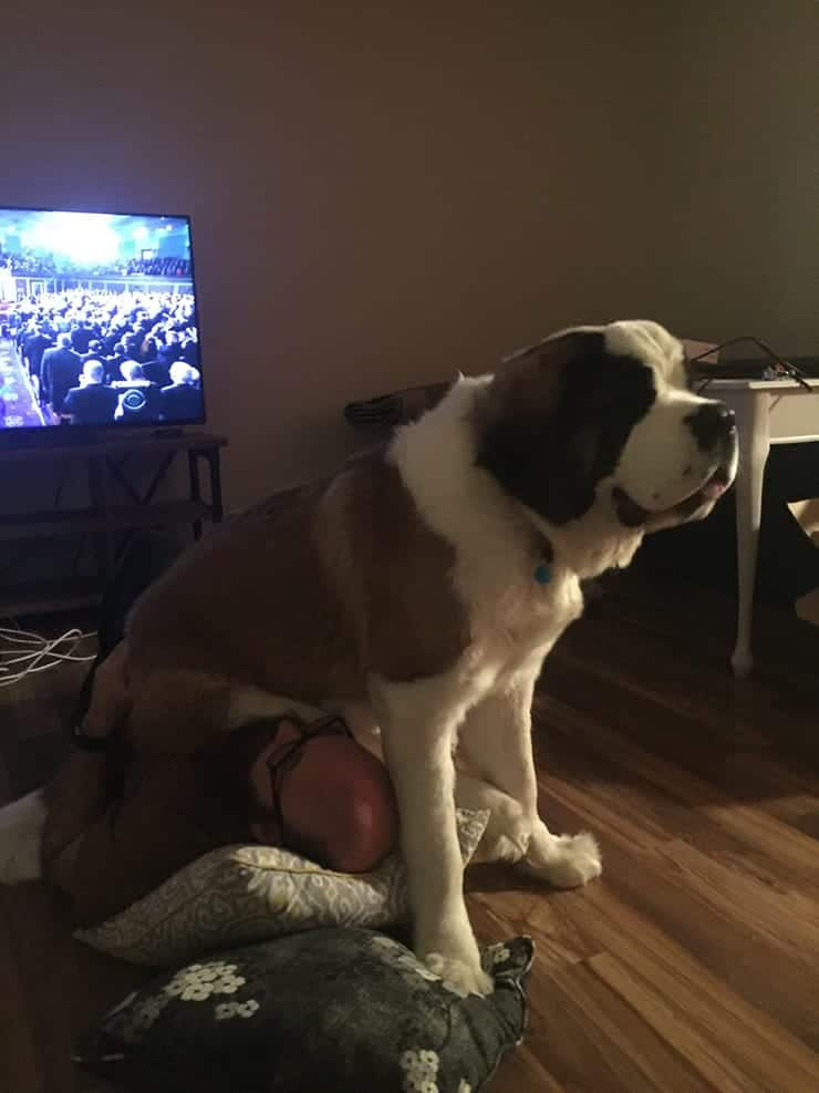 Kate Winslet, my St. Bernard puppy sitting on me.
