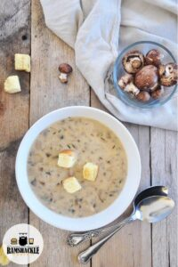 Homemade Cream of Mushroom Soup in a white bowl on a picnic table with a side dish of raw mushrooms