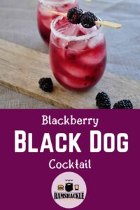 """Blackberry Black Dog Cocktail"" with two cocktails on a wood plank and garnished with blackberries"