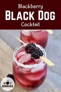 """Blackberry Black Dog Cocktail"" with a picture of a rimmed glass containing the drink with two blackberries garnishing the top"