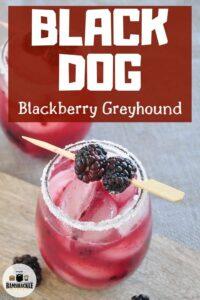 Black Dog Blackberry Greyhound