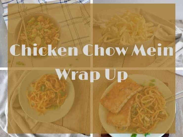 Chicken Chow Mein Wrap Up image with a collage of recipes that have been made in our chow mein series.