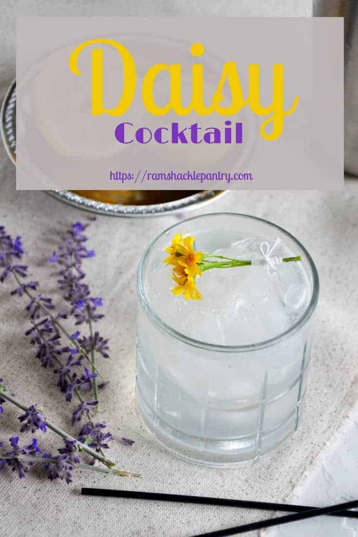 Well, ain't that a Daisy? It sure is! This classic cocktail the Rum Daisy Cocktail is a simple treat that may have been the origin of the margarita! Learn about this origin story and also get the recipe for this elegant and tasty drink! #rum #daisy #cocktail #margarita
