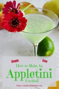 How to Make an Appletini pin