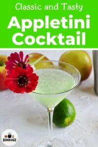 Classic and Tasty Appletini Cocktail with one cocktail glass filled with the libation and garnished with a big, red, flower.