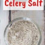celery salt on a picnic table with the text 'diy celery salt'