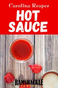 """""""Carolina Reaper Hot Sauce"""" and a few peppers on a table with a dish of the hot sauce."""