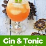 """Gin and Tonic Classic Cocktail"" and a drink on a picnic table with dried limes and pine cones"