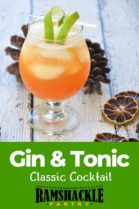 """""""Gin and Tonic Classic Cocktail"""" and a drink on a picnic table with dried limes and pine cones"""
