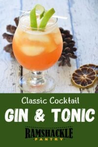 """""""Classic Cocktail Gin & Tonic"""" with a side shot of the drink, a few pine cones, and dried out limes in the background."""