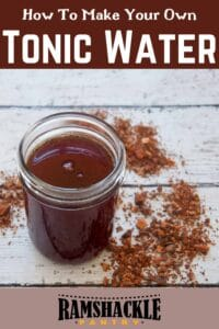 """""""How to make your own tonic water"""" with a picture of tonic syrup"""