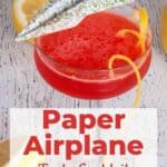 Paper Airplane Tasty Cocktail with a cute drink with an actual paper airplane garnish..