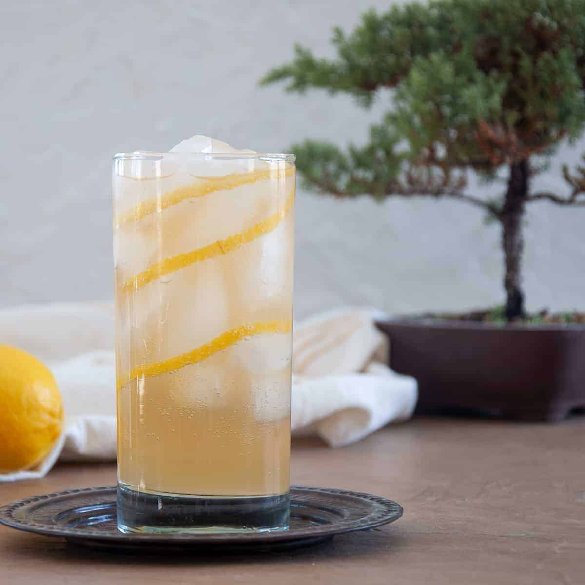 A single Horse's Neck Cocktail on a serving plate with a lemon and bonsai tree in the background.