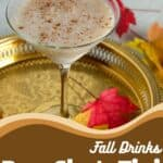 Fall Drinks RumChataTini in a martini glass and adorned with cinnamon stick.